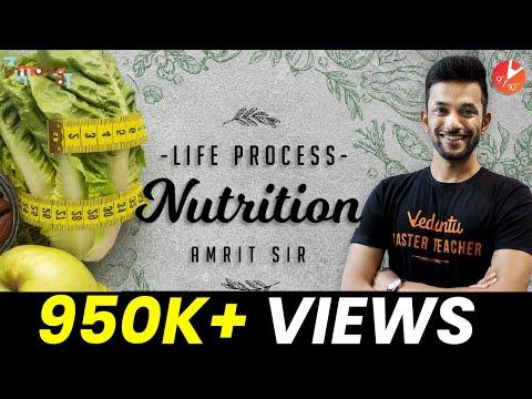 Nutrition | Life Process CBSE Class 10 Science (Biology) Chapter 6 NCERT Vedantu | Mode of Nutrition