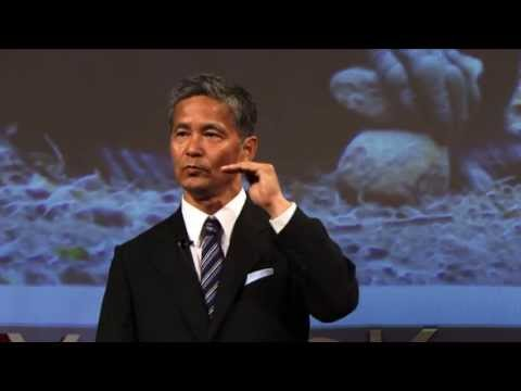 Imagination: Human mind viewed from chimpanzee mind: Tetsuro Matsuzawa at TEDxYouth@Kyoto 2013