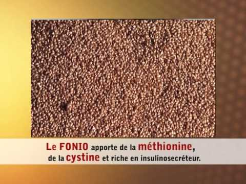 USADF improves incomes, lives of Benin's fonio producers