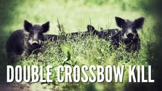 Two Hogs With One Shot! - Double Crossbow Kill - Hog Hunting Texas