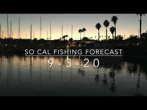 So Cal Fishing Forecast 9-3-20