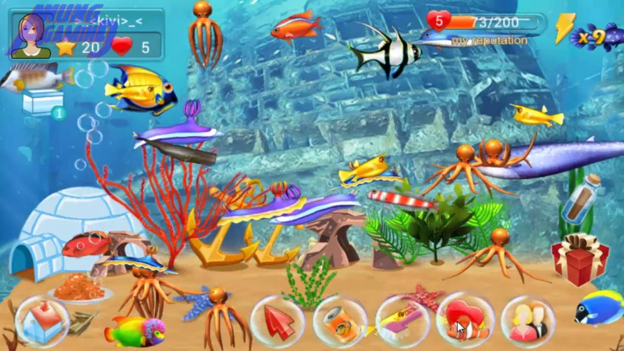 Fish live 9 my fish died and buy new fish game for Game and fish