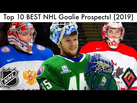 Top 10 BEST NHL Goalie Prospects! (Hockey Prospect Rankings   Talk 2019) 40292e94c