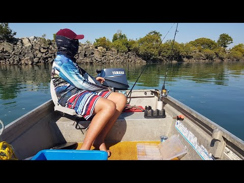 Mackay 2019 Fishing Comp (mackay Pioneer River)