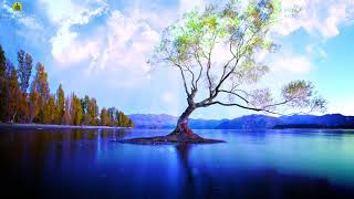 10 Hours Relaxing Music for Stress Relief l Slow Piano Instrumental l Calming Peaceful Sleep Music