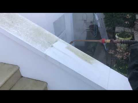 How to remove green algae from exterior painted walls in Kensington London