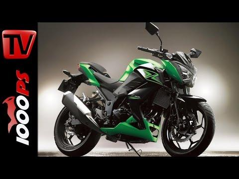 Kawasaki Z 300 - 2015 | Preis, Features, Verfügbarkeit