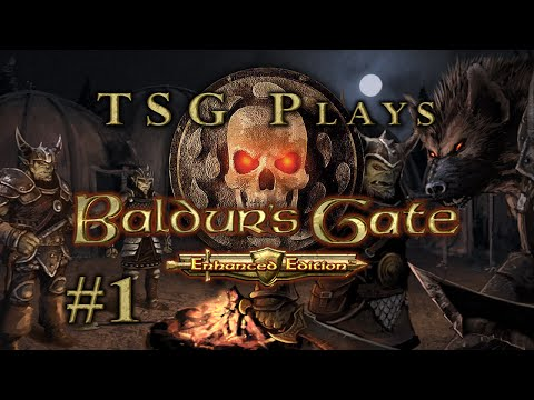 Baldur's Gate: [#1] Clean as an Elven Arse