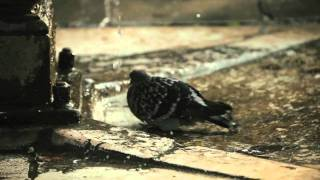 Deep at Night (Adam K & Soha Remix) - Ercola & Heikki L