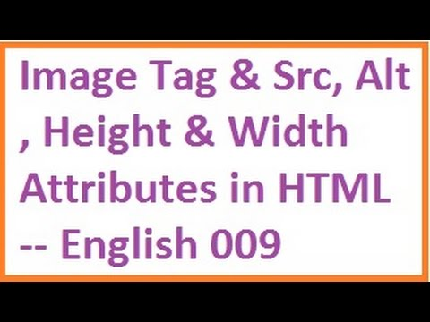 Image Tag and Src, Alt, Height and Width Attributes in ...
