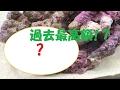 過去最高額の生体を購入!?【海水水槽】 の動画、YouTube動画。