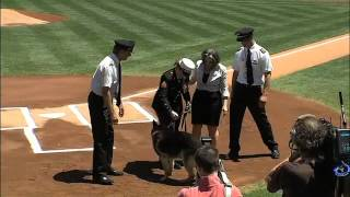 2012/05/13 Cpl. Leavey and Sgt. Rex honored