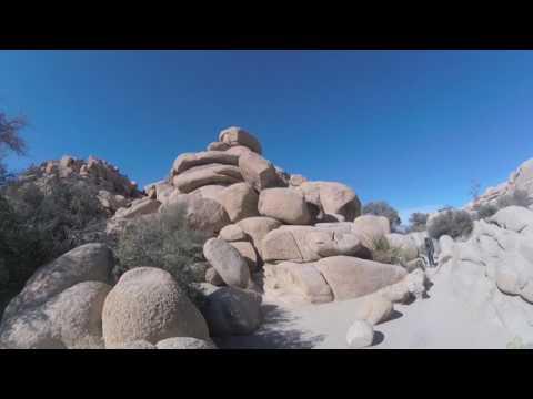 True Travel Tips - Joshua Tree Park