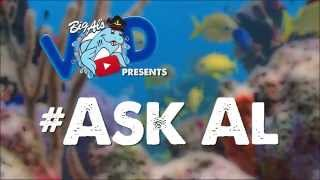 #AskAl: What's on My Fish's Face?