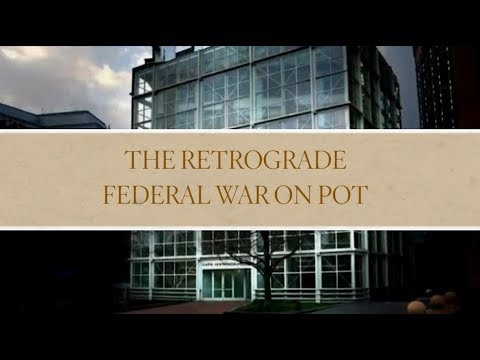 Cato Connects: The Retrograde Federal War on Pot