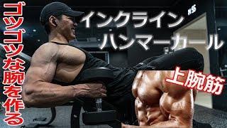 【筋トレ】腕のボコボコ感を作るインクラインハンマーカールのポイント!!