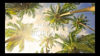 Havana - Camila Cabello (Acoustic Cover by Borja AG)