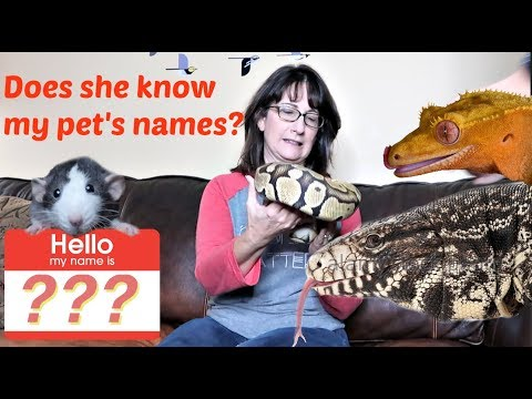MY MOM GUESSES MY ANIMAL'S NAMES!