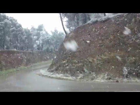 31-12-2015-- Χιόνια  στον περιφερειακό της Λαμίας.