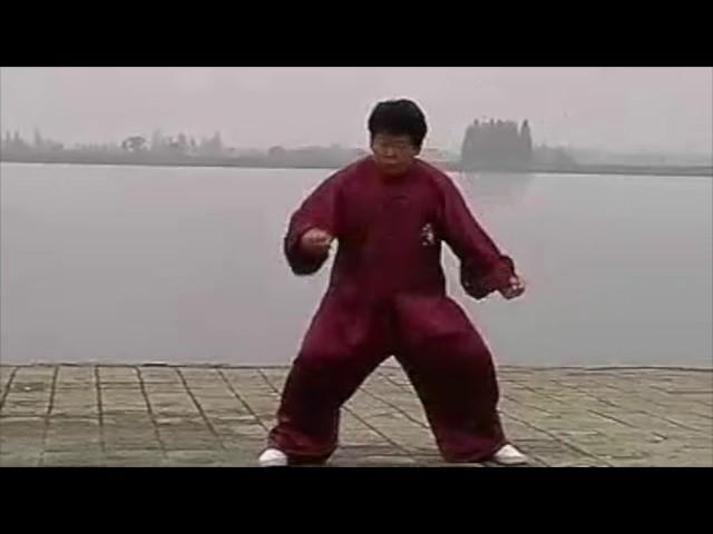 Chen Yu  - Tai Chi style Chen Xinjia Erlu [陈氏太极拳新架 Taijiquan style Chen]