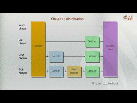 4. La distribution