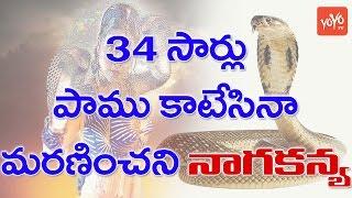 34 సార్లు పాము కాటేసినా మరణించని నాగకన్య! 18Years Old Himachal Girl Survives 34 Snakebites | YOYO TV