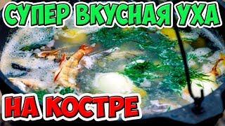 Рецепт УХИ на Костре. Рыбалка и Тройная Уха от Виктора Гончаренко. Тот самый Язь