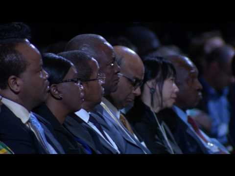 South Africa 2017 - Africa in the New Global Context