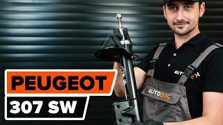 Como substituir Amortecedor de suspensão PEUGEOT 307 SW (3H) - vídeo guia
