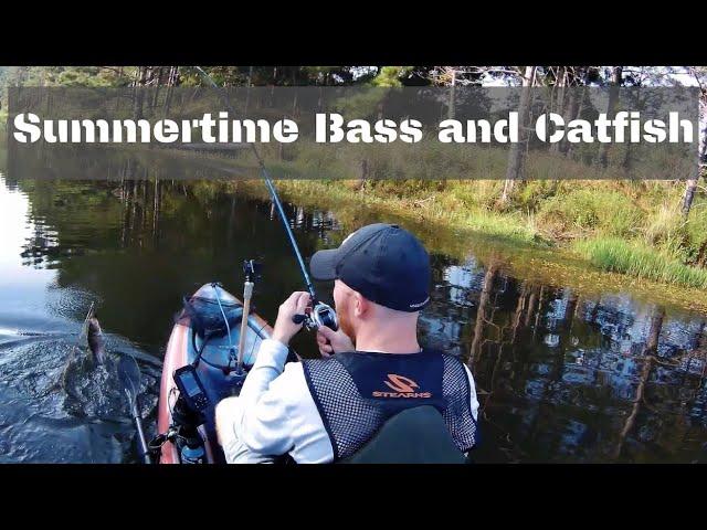 Summertime Bass and Catfish