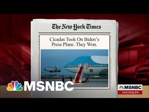 Cicadas Ground White House Press Corps Plane   MSNBC