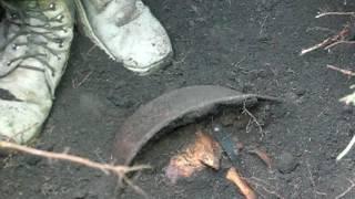 1 часть Нашли немецкого солдата с жетоном в Маяцком лесу