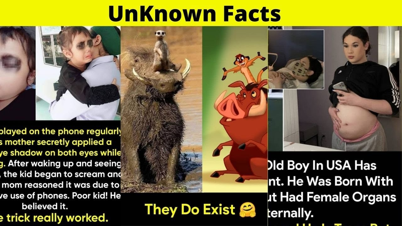 Download 50+ Random Facts I've Heard for the First Time | UnKnown Facts