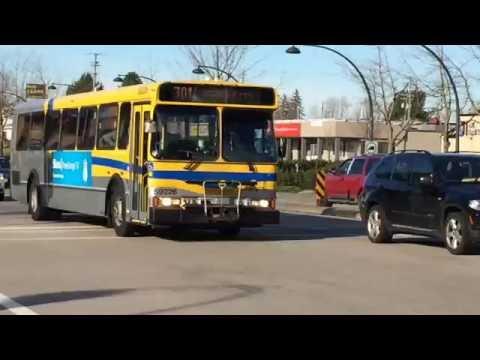 Buses At Newton Exchange