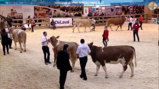 Replay - CONCOURS SIMMENTAL Mardi 28 fevrier