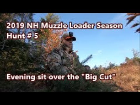 2019 NH Muzzle Loader Season, Hunt #5, Evening Over The Big Cut