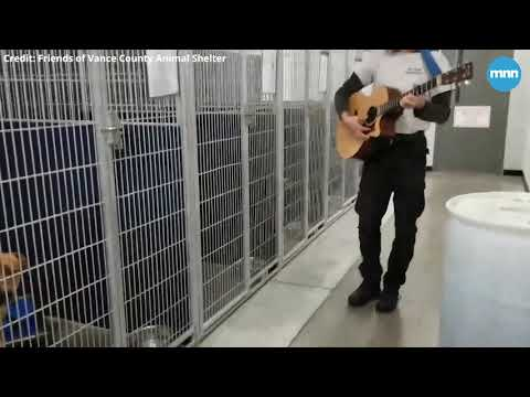 Animal service officer sings and plays guitar for shelter dogs