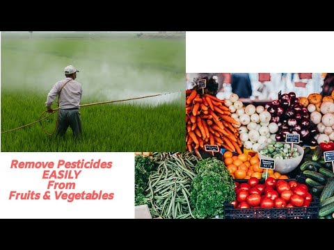 3 Ways To EASILY Remove Pesticides From Fruits & Vegetables