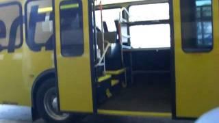 HERTZ NEW BUS