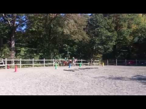 クローバー牧場 4歳の乗馬Ⅱ