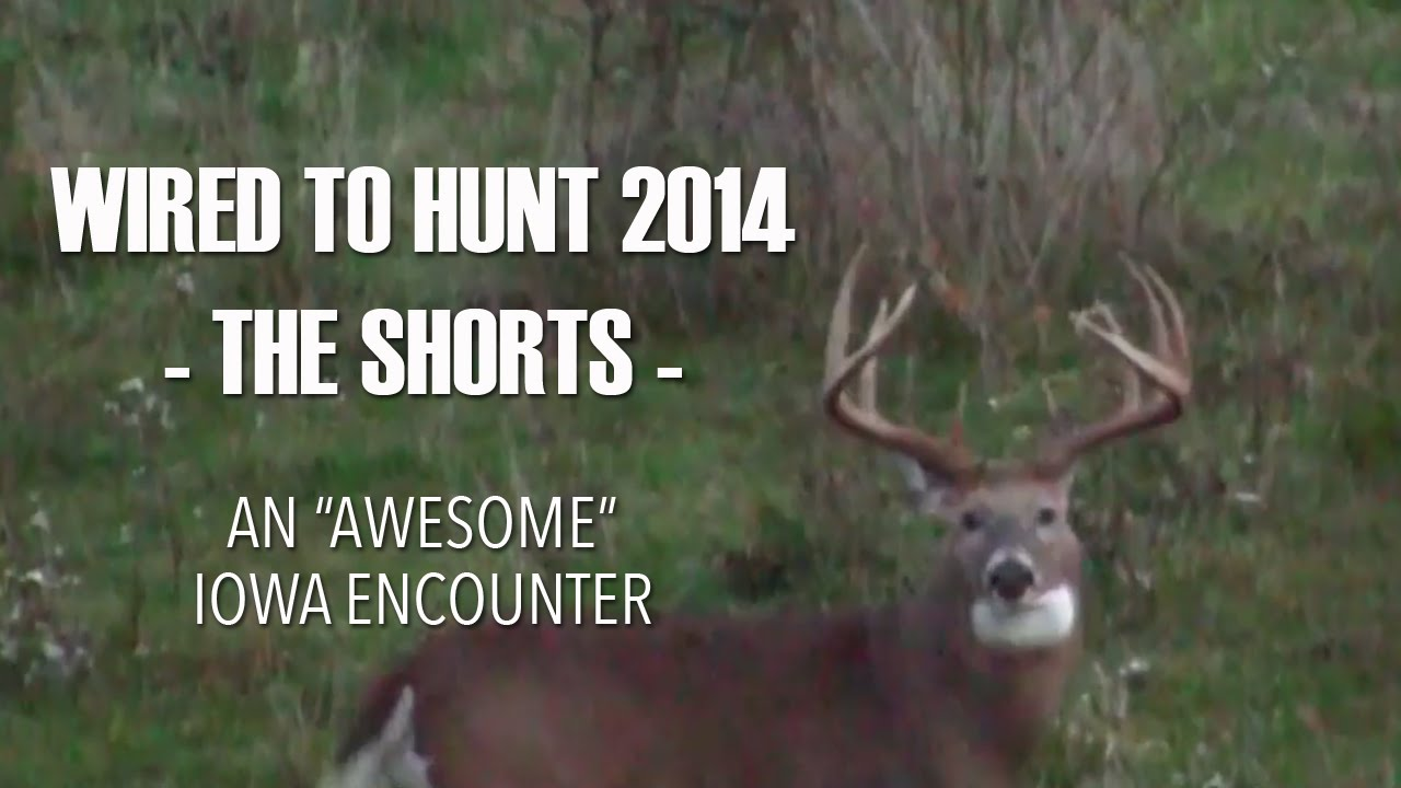 Wired To Hunt 2014 - The Shorts: An \
