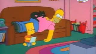 Симпсоны - 2 сезон - Совершенно безумный папа (clip2)