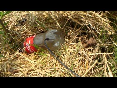 เทคนิคเกษตรดอทคอม เทคนิคการทำน้ำหยดโดยใช้ขวดน้ำดื่มที่ทิ้งแล้ว