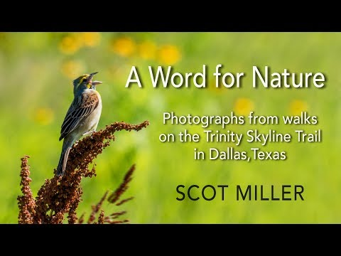 A Word for Nature: Photographs from the Trinity Skyline Trail in Dallas, Texas