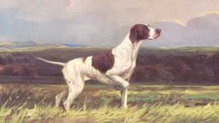 Gun Dogs, 1930s Prints By Ward Binks, Featuring Hunting Dogs