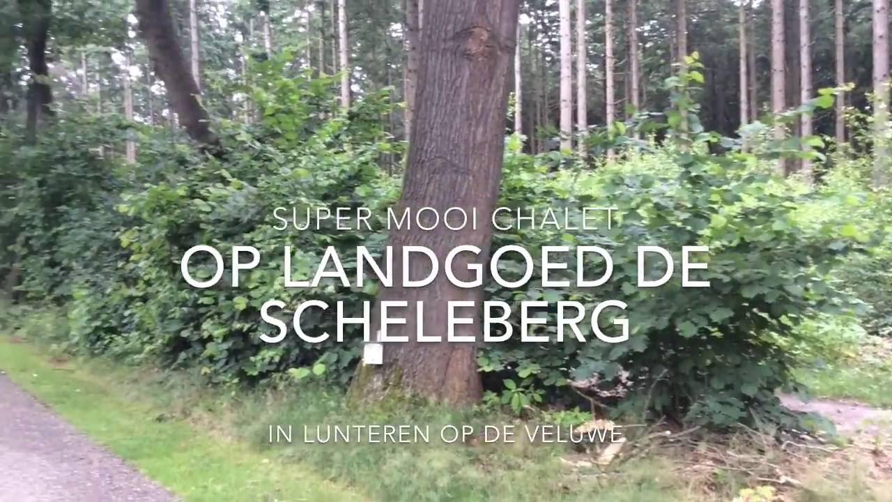 Prachtig chalet op Landgoed de Scheleberg in Lunteren op de Veluwe