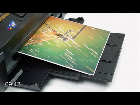 Epson L1300: тест на скорость печати фото А3 формата