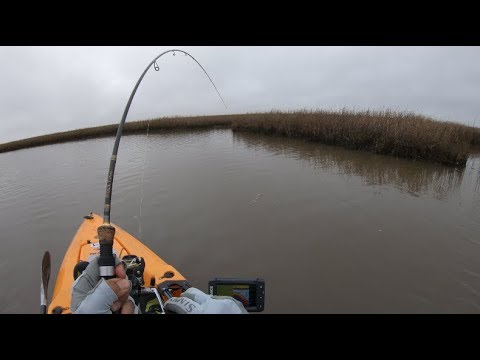 !!!BEST FISHING EVER!!! And It Wasn't Because Of A Fish, Kayak Fishing Texas