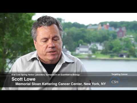 81st Symposium - Targeting Cancer - Scott Lowe