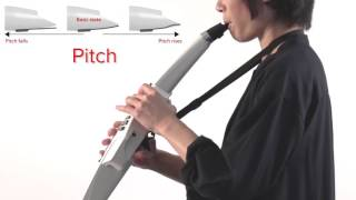 Embouchure (Holding the Mouthpiece): Roland Aerophone AE-10 #02